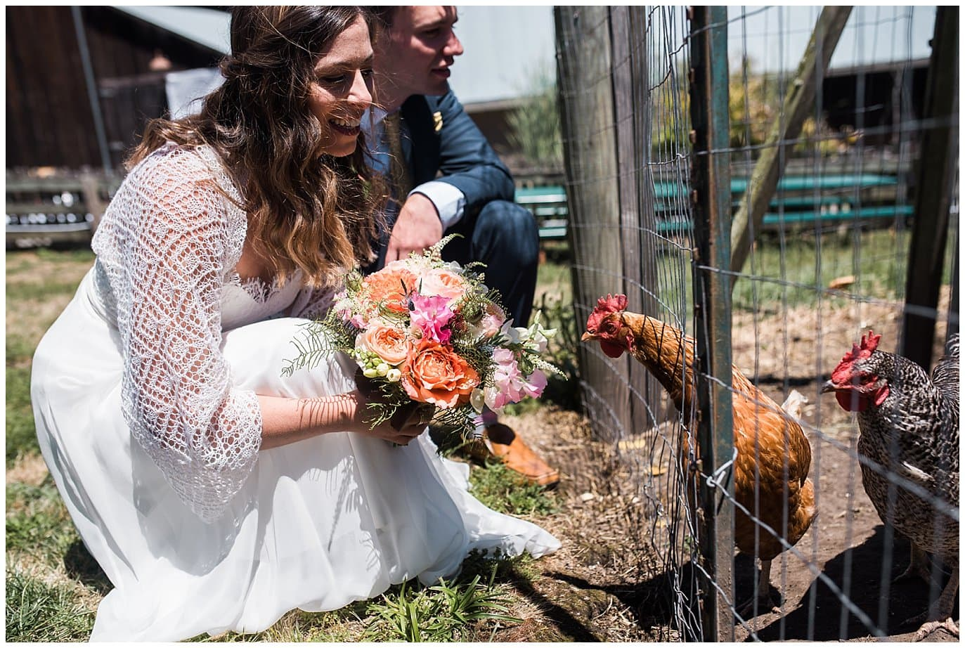 chickens peck bride's bouquet at Mann Family Farm wedding by Bolinas wedding photographer Jennie Crate