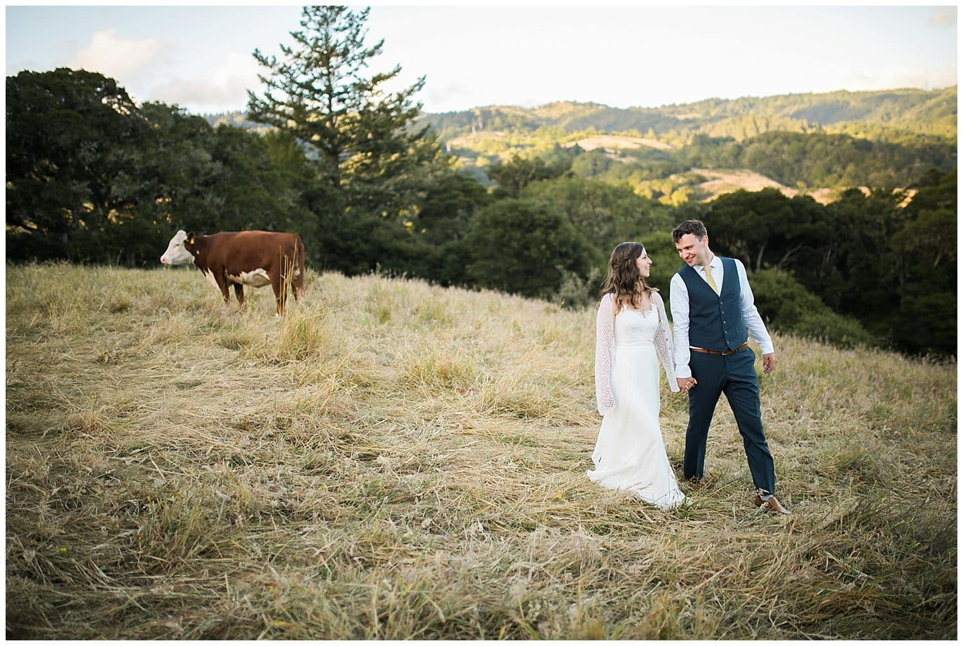 couple walks in field at sunset with cow in background at Mann Family Farm Wedding photo