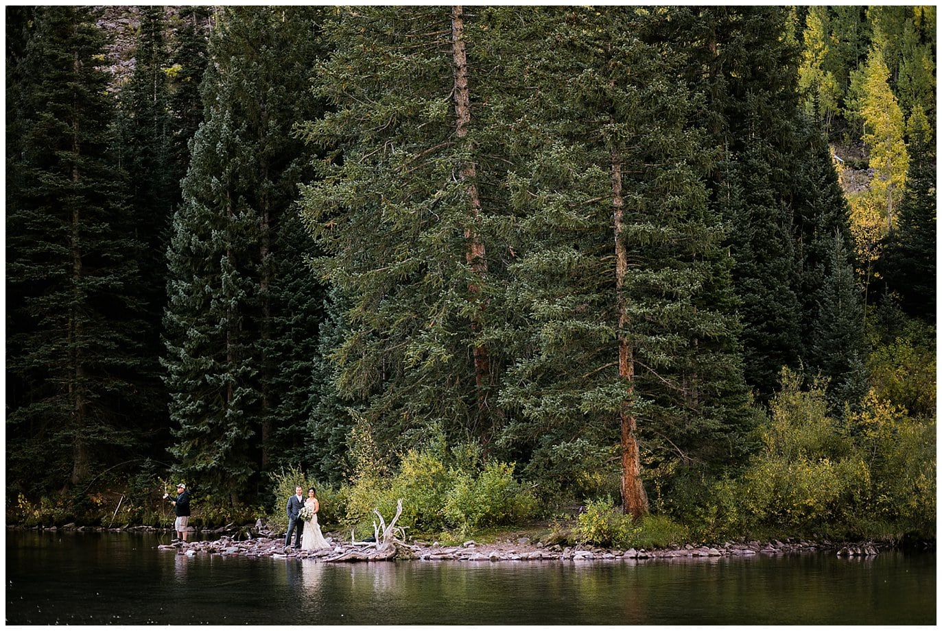 bride and groom in evergreen trees photo