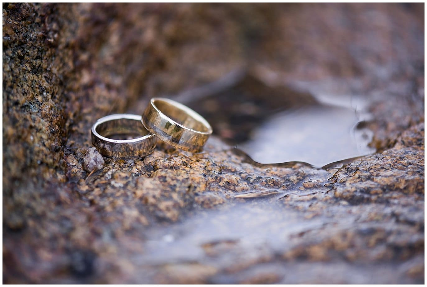 Gold and Silver wedding rings for two grooms photo