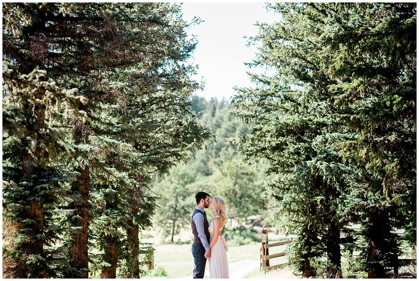 Colorful bride and groom portrait in evergreen trees at Deer Creek Valley Ranch wedding by Boulder Wedding Photographer Jennie Crate Photographer