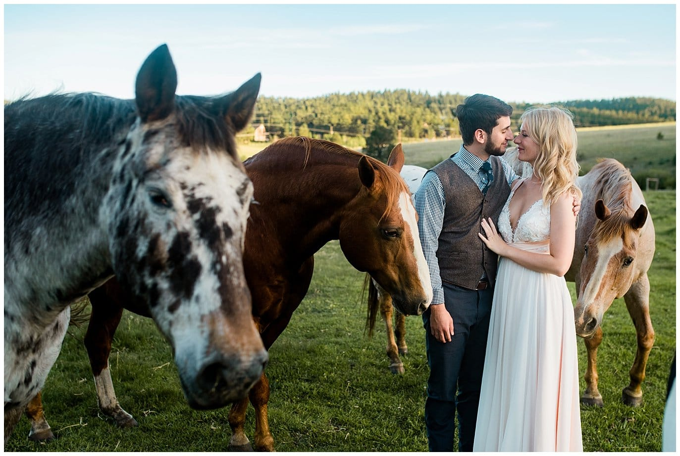 Bride and Groom with horses at Deer Creek Valley Ranch wedding by Denver Wedding Photographer Jennie Crate Photographer