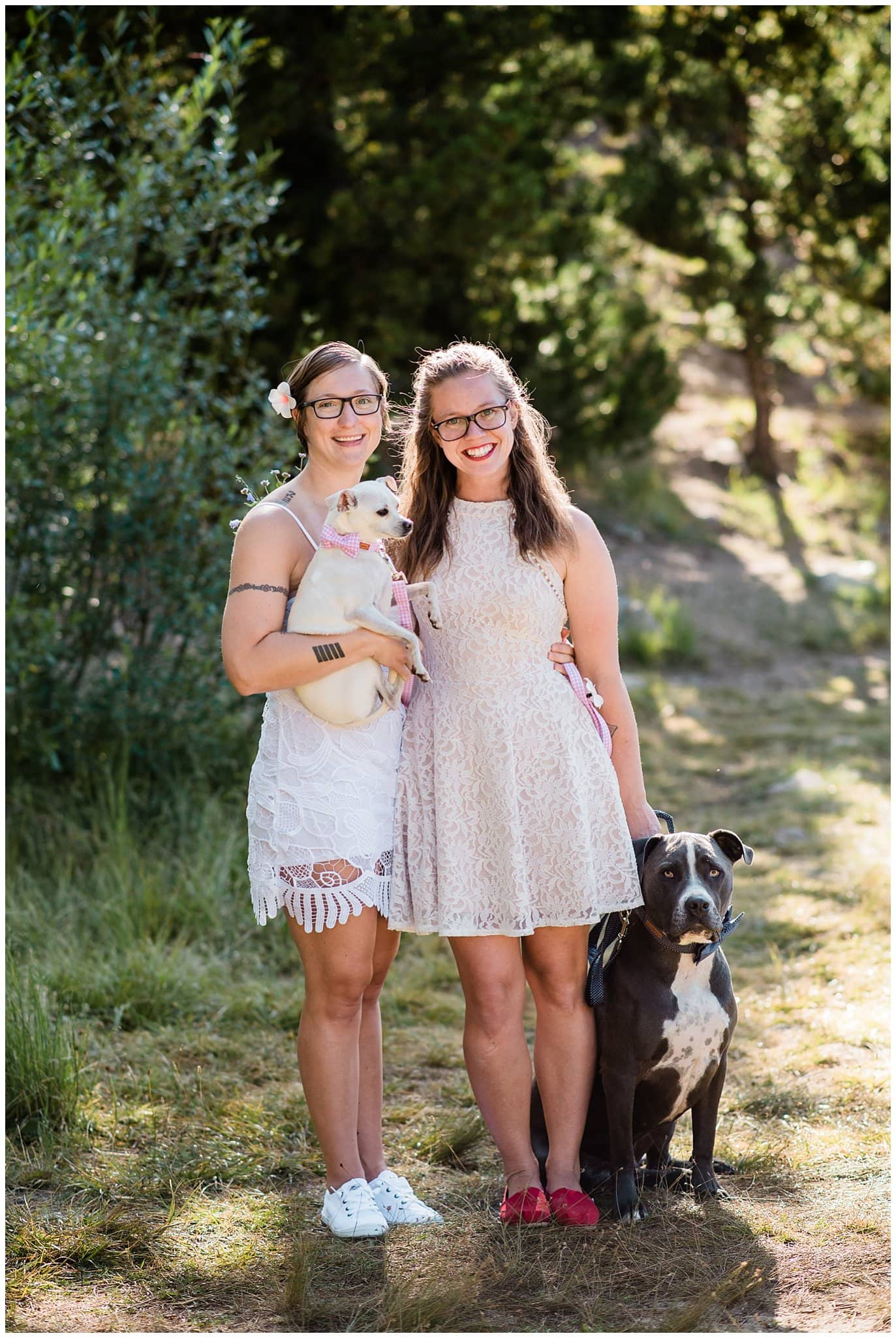 family photo with dogs at wedding photo