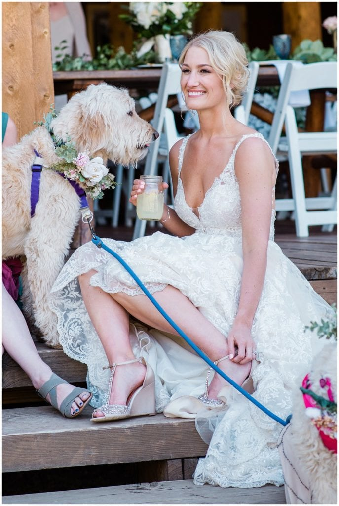 bride and dog relaxing on steps at Piney River Ranch photo