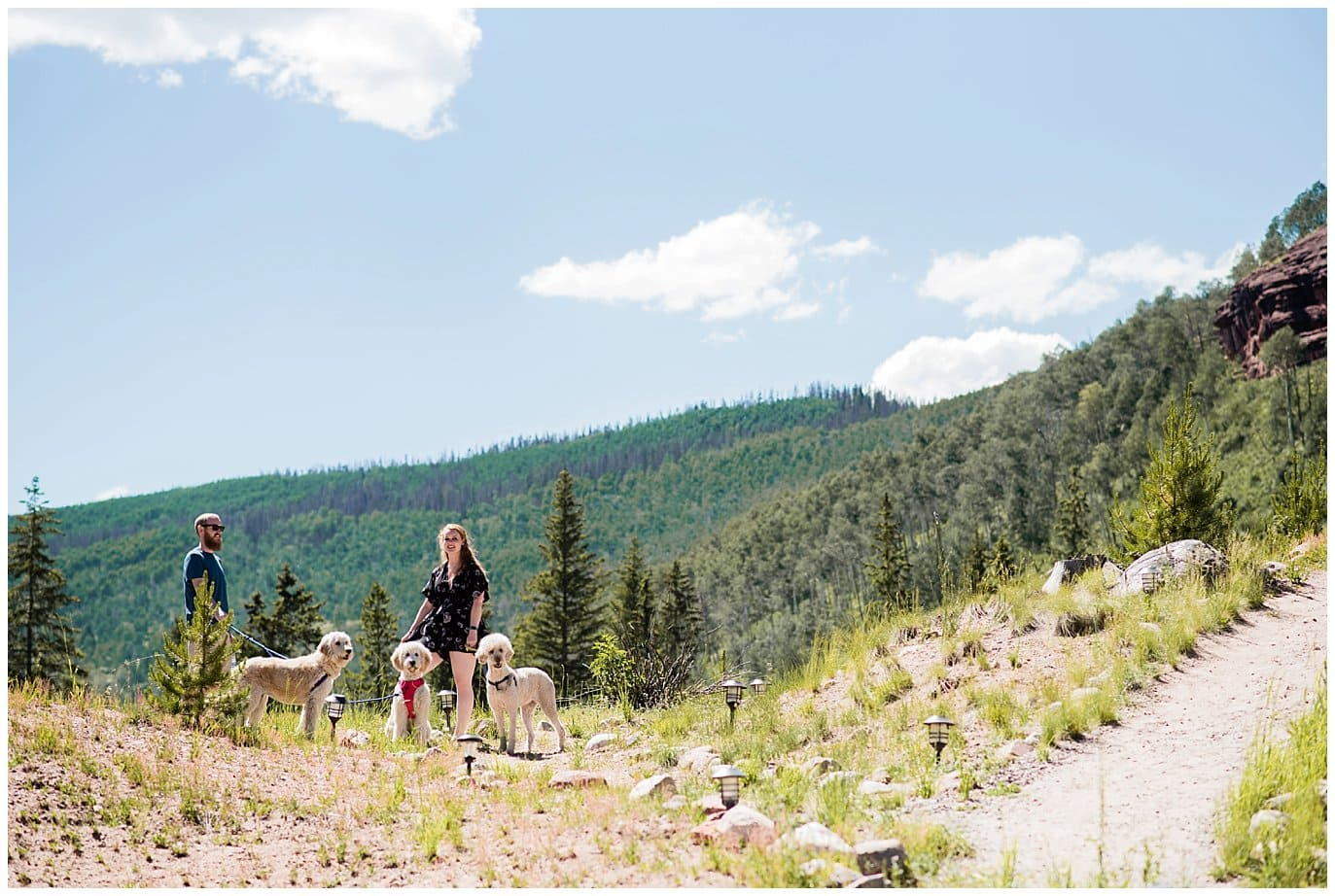 Dogs on hillside at Summer Piney River Ranch wedding by Vail wedding photographer Jennie Crate, Photographer