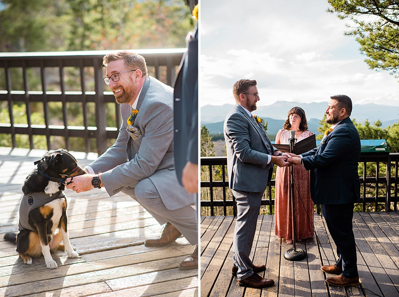 grooms get rings from ring bearer dog at Panorama point during LGBTQ wedding by Colorado LGBT photographer Jennie Crate