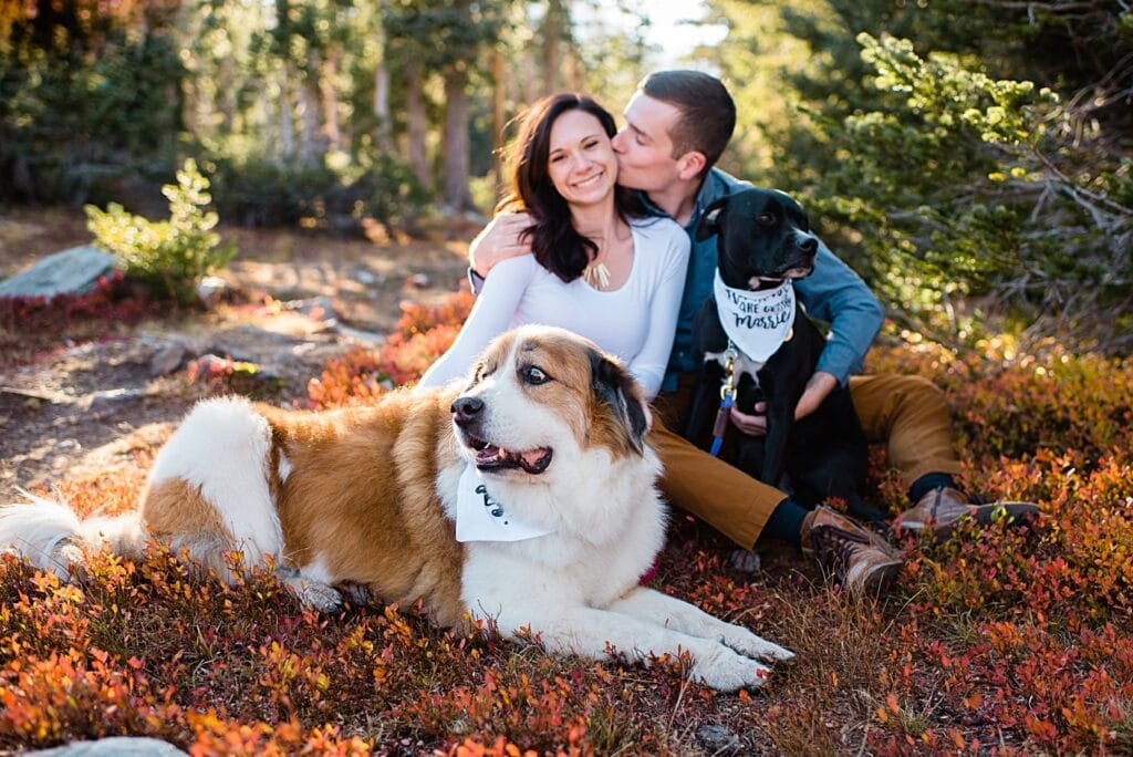 couple with dogs during Mitchell Lake engagement session by Boulder engagement photographer Jennie Crate